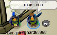 pinguins-querendo-aparecer-no-blog2